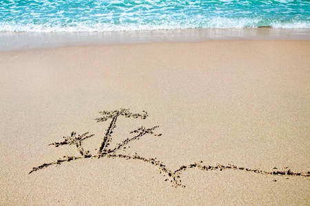 islet: palm islet - picture on the sandy beach