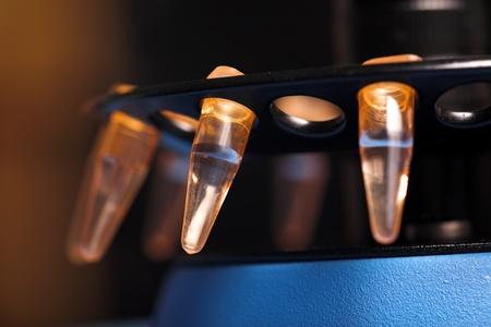 molecular biology. small plastick tube in tube rack