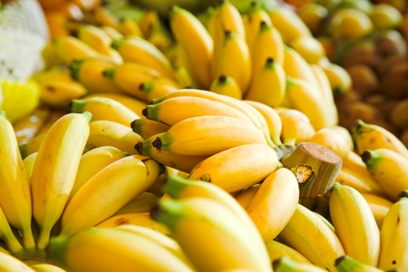 bunches of yellow babanas on the market photo