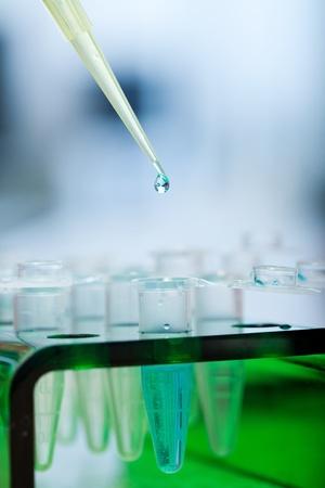 workplace modern laboratory for molecular biology test photo