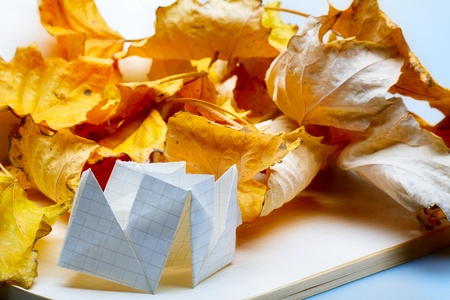 origami on the notebook and autumn leaves photo