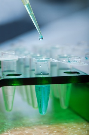 pipette: lugar de trabajo moderno laboratorio para la prueba de biolog�a molecular