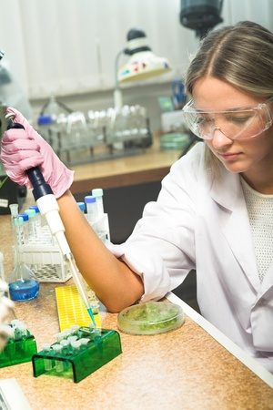 scientist doing DNA test in modern laboratory photo