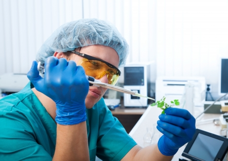 scientist with green plant in modern laboratory photo