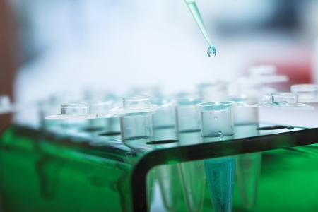 workplace modern laboratory for molecular biology test 스톡 콘텐츠