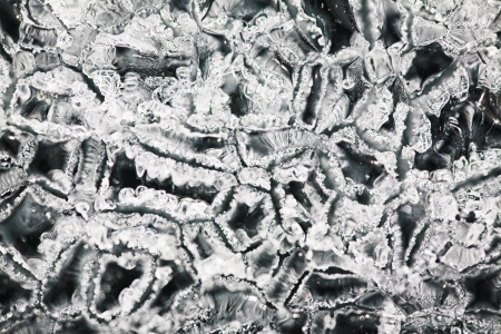 macro texture of Baikal ice photo