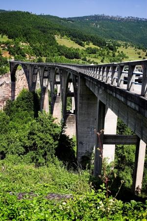 tara: Tara Bridge over green Tara Canyon.