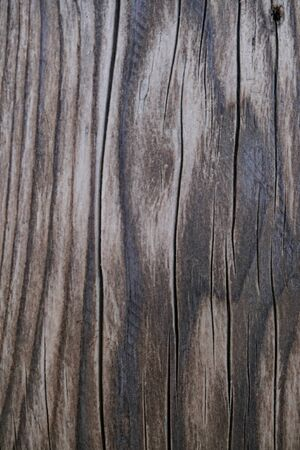 Wood surface background texture for your design