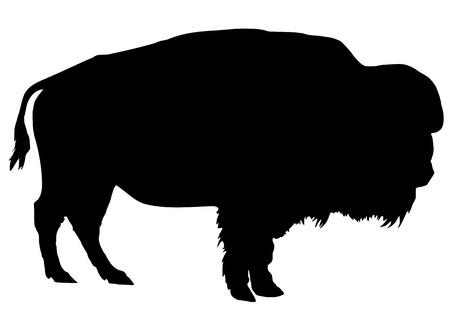 Silhouet van de buffel op een witte achtergrond Stockfoto - 27361260