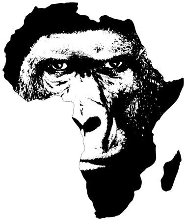 흰색 배경에 고릴라의 얼굴을 가진 아프리카의 그림