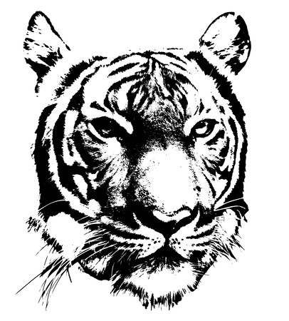 black and white silhouette of a tigers face Illustration