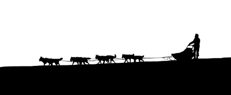 mushing: Dog Sledding on the horizon