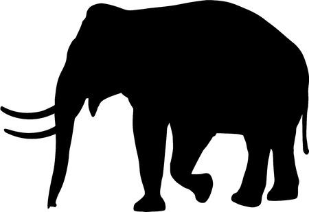 éléphant silhouette sur fond blanc
