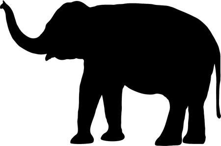 Lphant silhouette sur fond blanc Banque d'images - 32521590