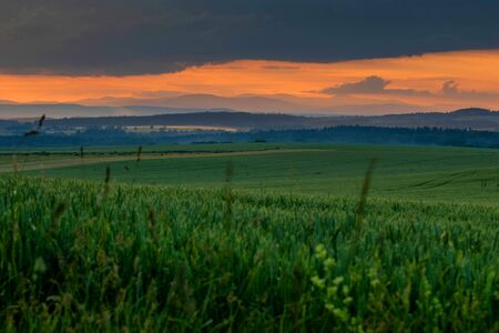green field with red sunset and mountains on horizon Фото со стока