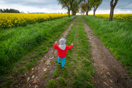 children walk the path in the alley of trees and fields