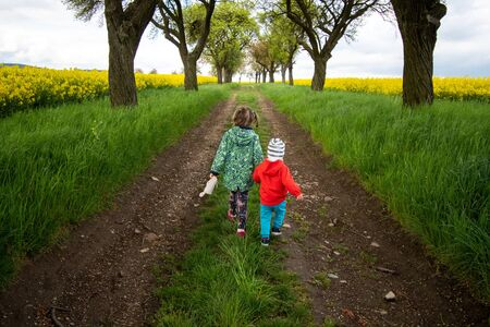 children holding hands walk the path in the alley of trees and fields