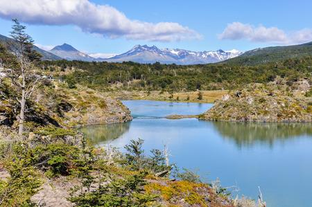 tierra del fuego: Tierra del Fuego National Park in Ushuaia, Argentina