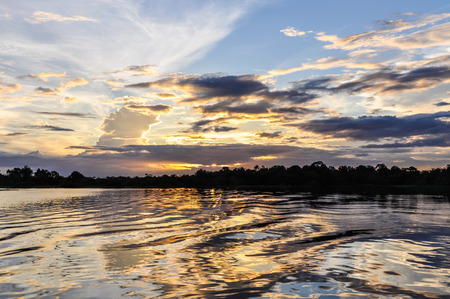 amazon rainforest: Sunset in the Amazon Rainforest, close to Manaus, Brazil