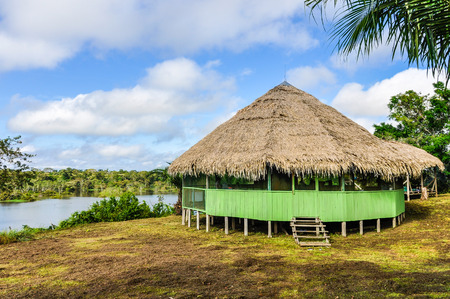 pink dolphin: Small hut in the Amazon Rainforest, close to Manaus, Brazil