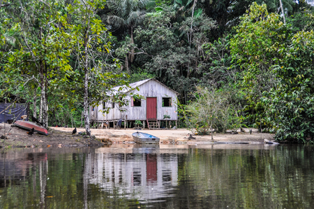 pink dolphin: Lonely hut in the Amazon Rainforest, close to Manaus, Brazil Stock Photo