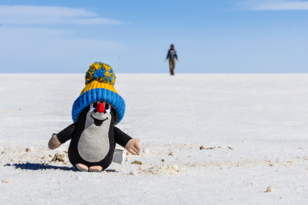 salar de uyuni: Cute plush toy in Salar de Uyuni, the biggest salt flat in the world, Bolivia Stock Photo