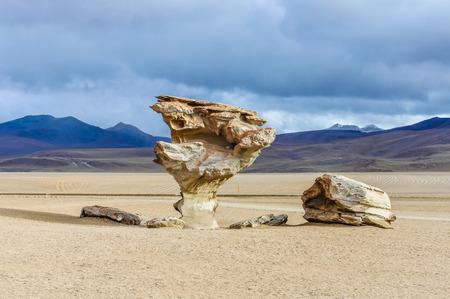 salvador dali: Salvador Dali rock tree in the High Andean Plateau desert in Bolivia