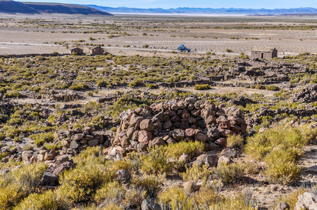 high plateau: Ancient amara tuins in the high Andean plateau in Bolivia Stock Photo