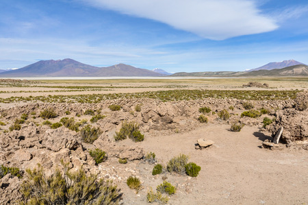 high plateau: in the High Andean Plateau desert in Bolivia