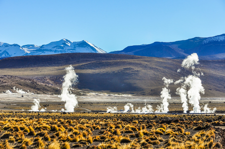 The active Tatio Geysers in the Atacama Desert in Chile