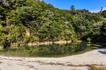 smal: Smal beach in the Abel Tasman National Park in New Zealand