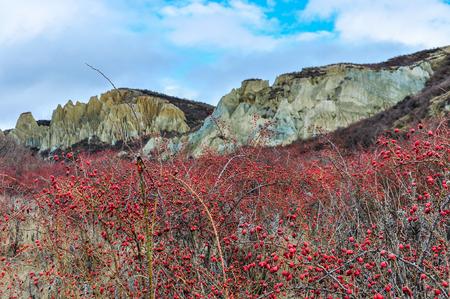 geological formation: The geological formation of Clay Cliffs near Omarama, New Zealand
