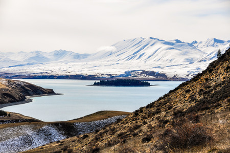 tekapo: View of a small island at Lake Tekapo, Southern Island of New Zealand