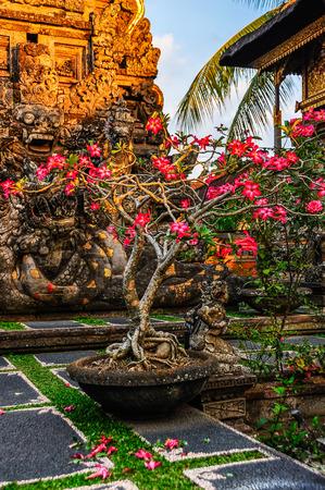 ubud: Pink flowers Saraswati Temple in the town of Ubud, Bali