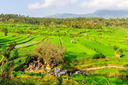 Traditional spiritual celebration taking place on a rice field near Tirtagangga in Bali Island, Indonesia Stock Photo