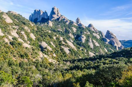 Rocks in the forest in Montserrat Mountain, Catalonia, Spain