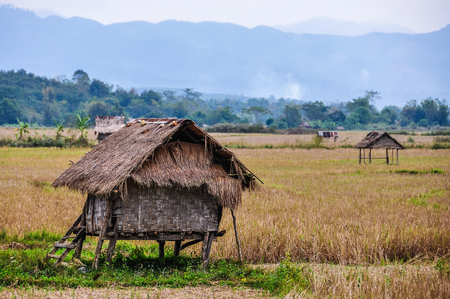 laotian: Hut in the countryside in the village Luang Nam Tha, Northern Laos