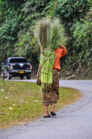 Woman carrying wood in the village Luang Nam Tha, Northern Laos Stock Photo