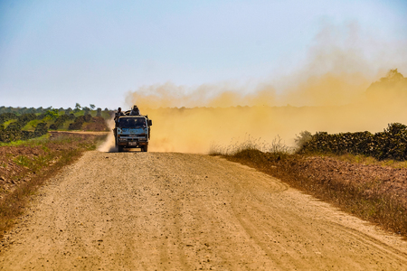 Dirt road between the coffee plantations in the Bolaven Plateau, Southern Laos