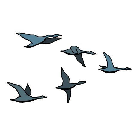 Autumn bird flock. Outline with different colors on white background. Vector illustration