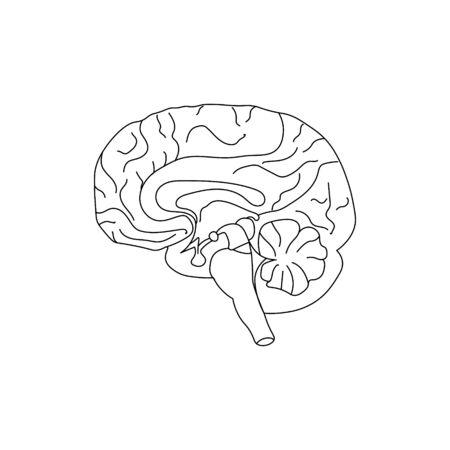 World Mental Health Day background. Brain. Line art doodle sketch. Black outline on white background. Ilustrace