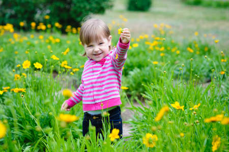 Cute little girl playing in sunny summer park. Toddler kid playing with a flowers. Kids play outdoors. Preschooler in school yard on warm day. Standard-Bild