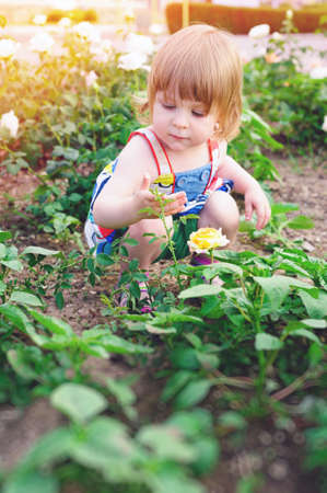 Cute little girl playing in sunny spring park. Toddler kid outdoor. Kids play outdoors. Preschooler in school yard on warm day.