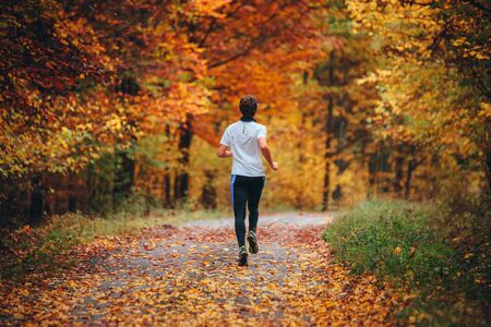 Trail runner in colorful autumn nature. Athlete training