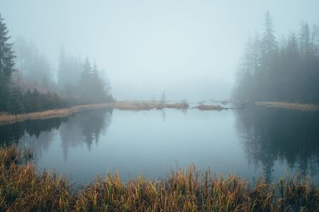 Misty morning by autumn lake, peaceful scenery, white edit space