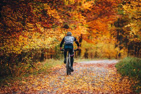 MTB Biker Ride in colorful autumn forest.slovakia 免版税图像