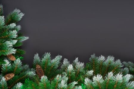 Christmas or New Year decoration background: fur-tree branches, pine cone on black grunge background with copy space.