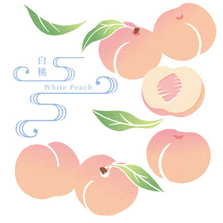 Illustration of the Japanese style pattern of peaches