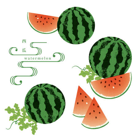 Hand drawn watermelon illustration Japanese traditional pattern Vetores
