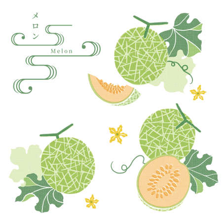 Hand drawn Melon illustration Japanese traditional pattern